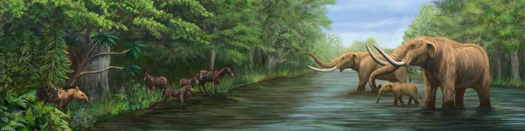 pleistocene