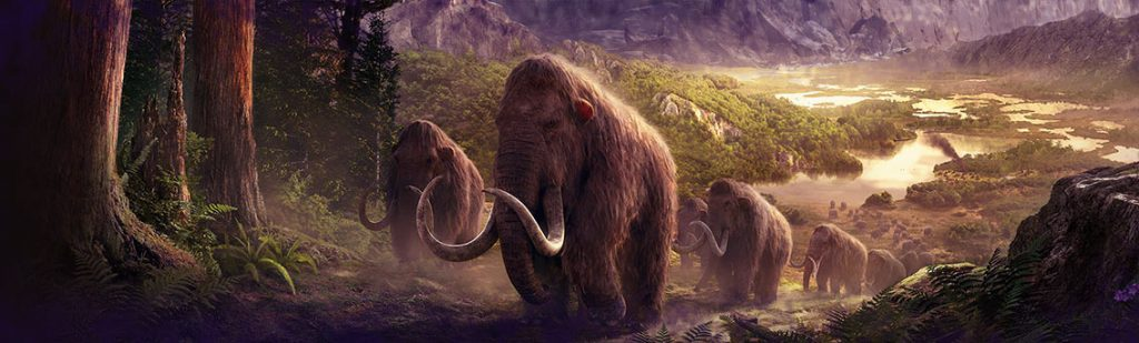 woolly-mammoth-cloning-biology-infographic